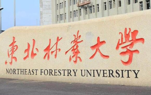 東北林業大學成人教育學院招生專業【最新】