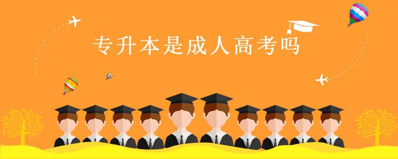 專升本是成人高考嗎